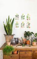 Fab Plant Lab 2